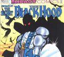Black Hood Vol 1 12