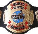 WEDF Television Championship