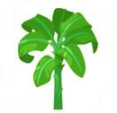 Banana-Tree.png
