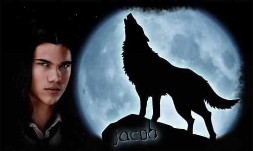 Image - Jacob-werewolf-vampires-vs-werewolf-7176531-500 ...