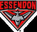 Images : Essendon