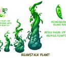 Beanstalk Plant