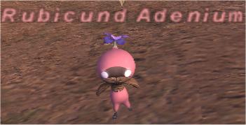 Rubicund Adenium - FFXIclopedia, the Final Fantasy XI wiki ...