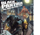 Black Panther: The Man Without Fear Vol 1