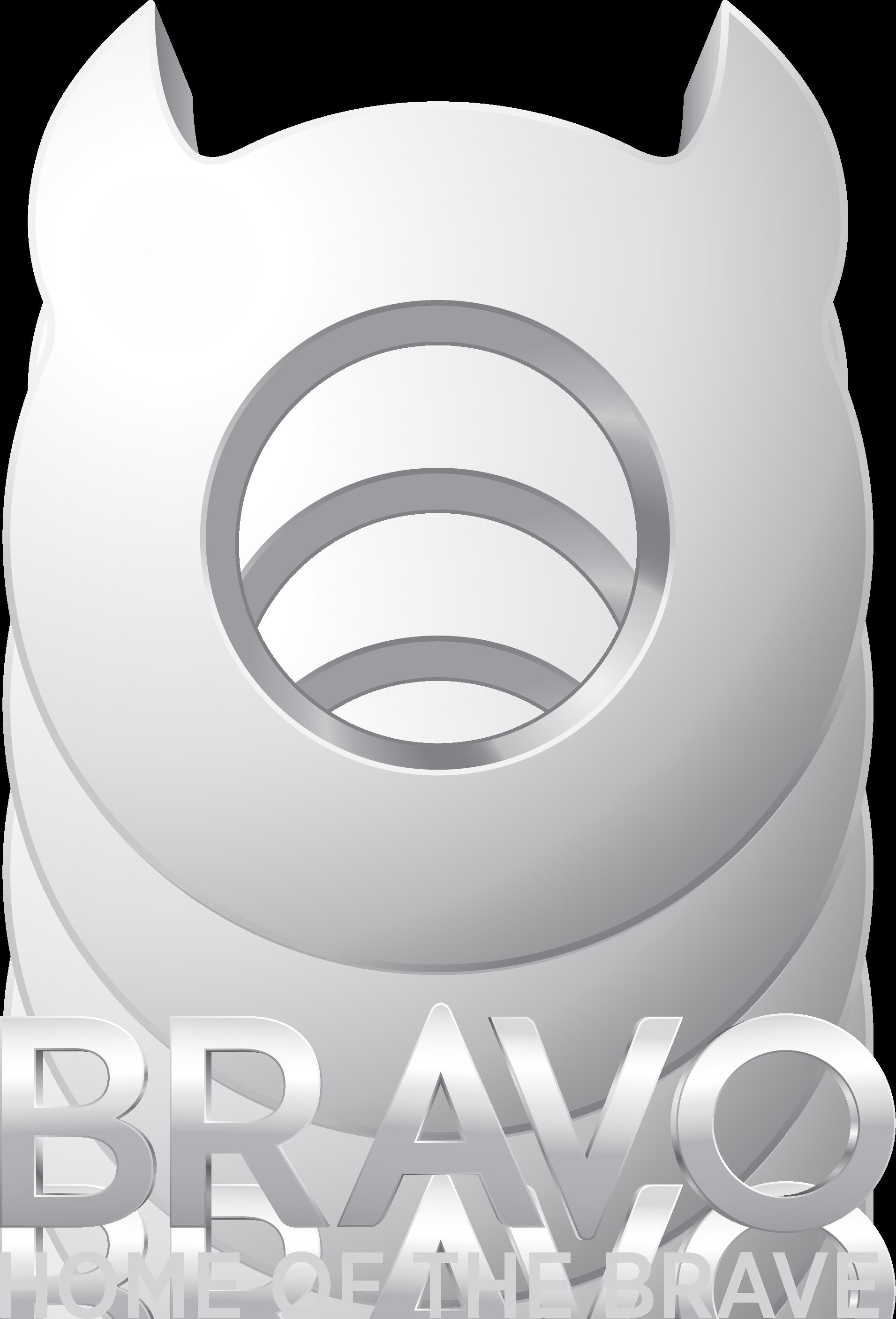 Bravo logo 2010Bravo Logo
