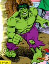 Bruce Banner (Earth-804) from What If? Vol 1 20 0001.jpg
