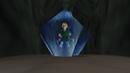Link usando amor de Nayru.png