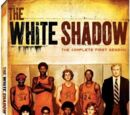 La sombra blanca