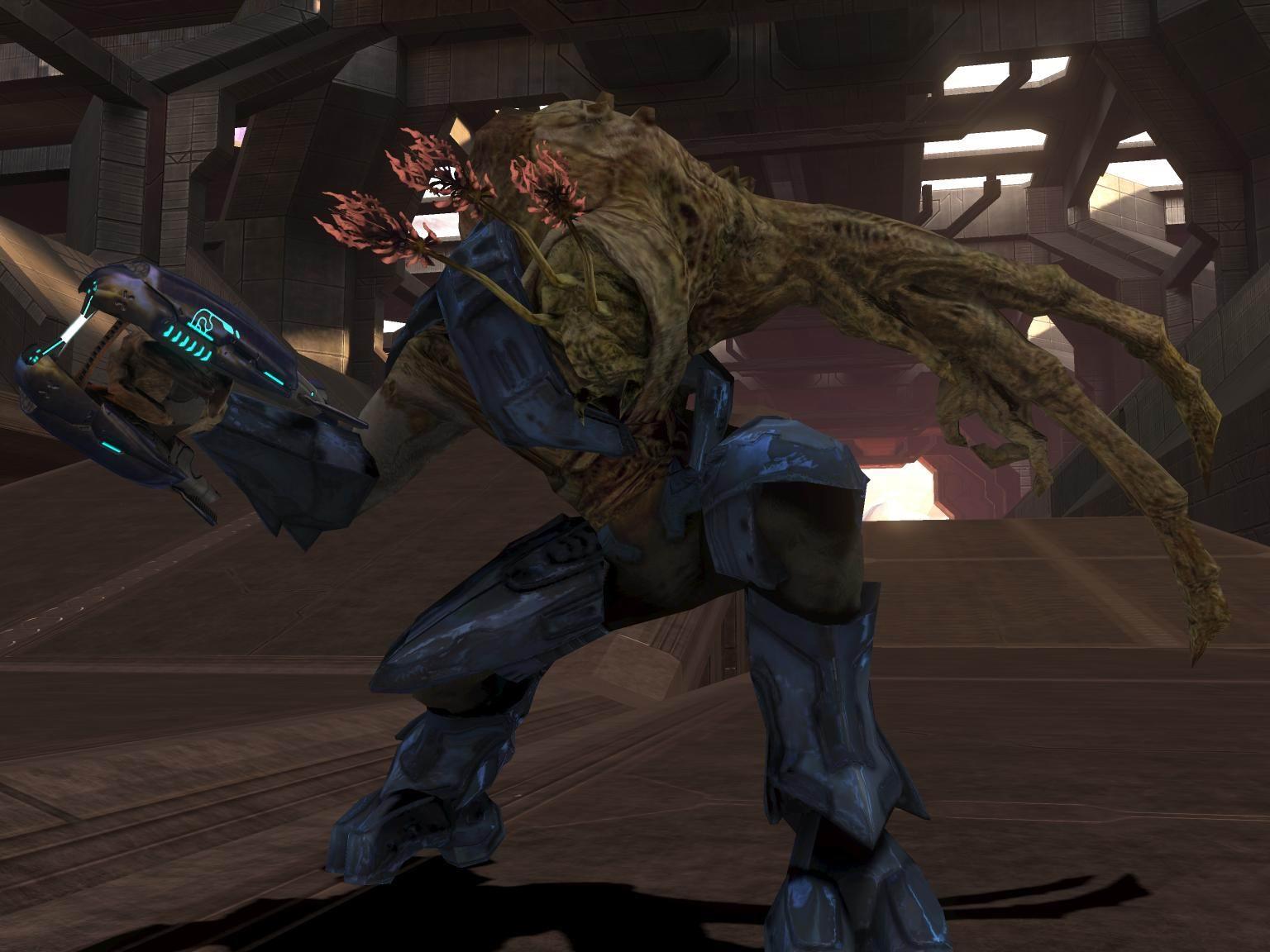 Halo 3 Elites vs Halo 4 Elites Elite Combat Form in Halo 3 by