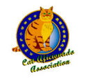 Cat Aficiando Association