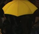 Der gelbe Regenschirm