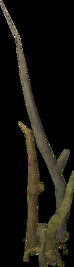 how to kill an evil tree runescape