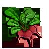 Radish-icon