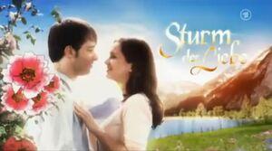 Sturm der Liebe season 6