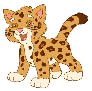 Dětská jagaur (4)