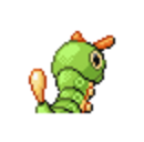 Caterpie Back III.png