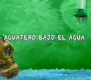 Aguatero Bajo el Agua