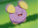 EP342 Whismur de Guy.png