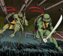 Teenage Mutant Ninja Turtles (IDW)