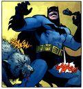 Batman 0597.jpg