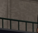 Diana of Paradise Island (The Brave and the Bold)