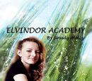 Elvindor Academy series