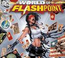 Flashpoint: The World of Flashpoint Vol 1 2
