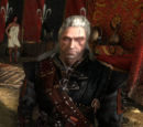 The Witcher 2 armor