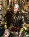 Tw2 screenshot armor shiadhal.png