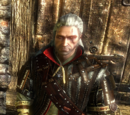 The Witcher 3 armor