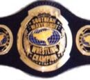 Southern Heavyweight Championship