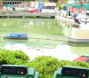 Remote Control Boats (Windsor)