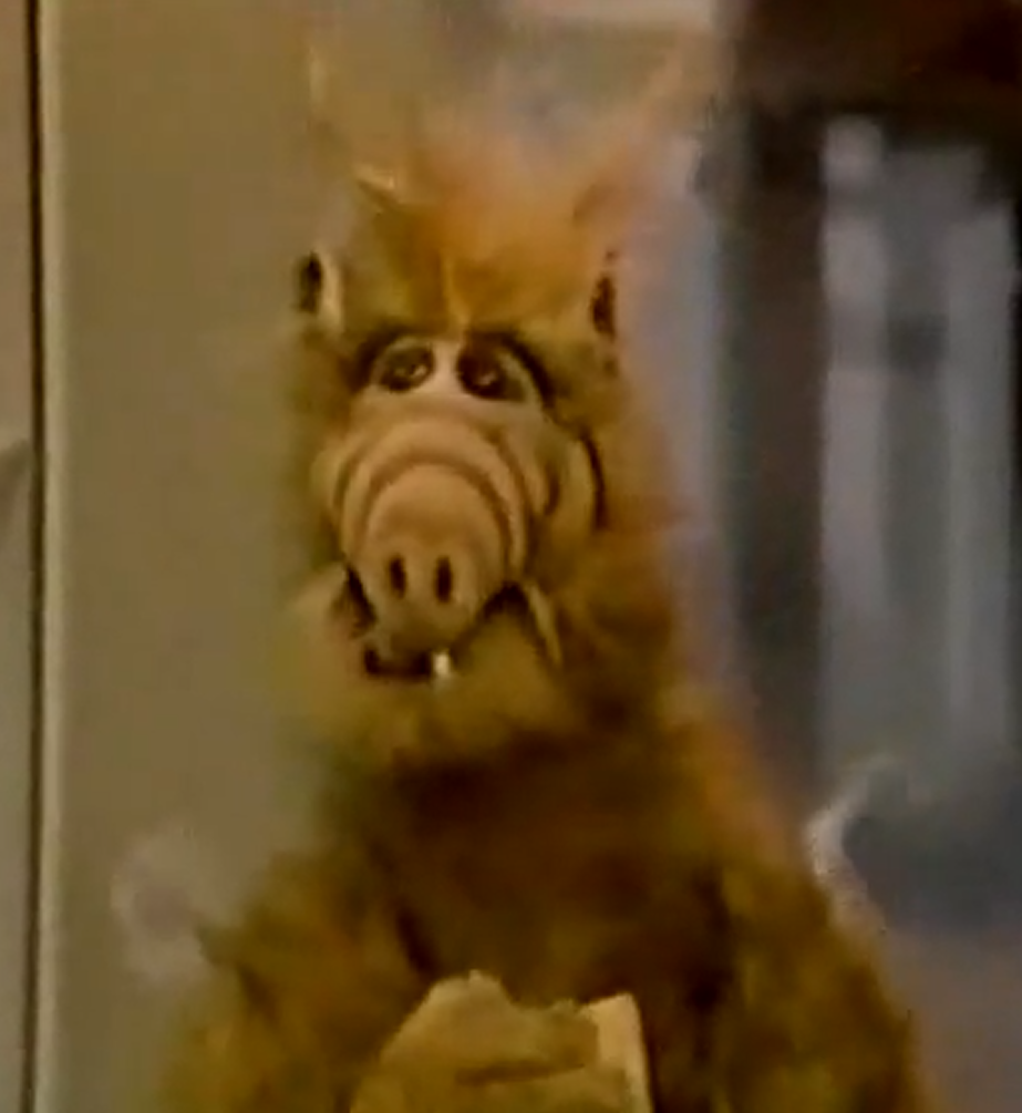 Try To Remember Part 1 Alf Wiki