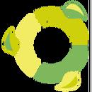 Fluxbuntu logo.png