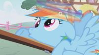 Rainbow Dash derping S1E4