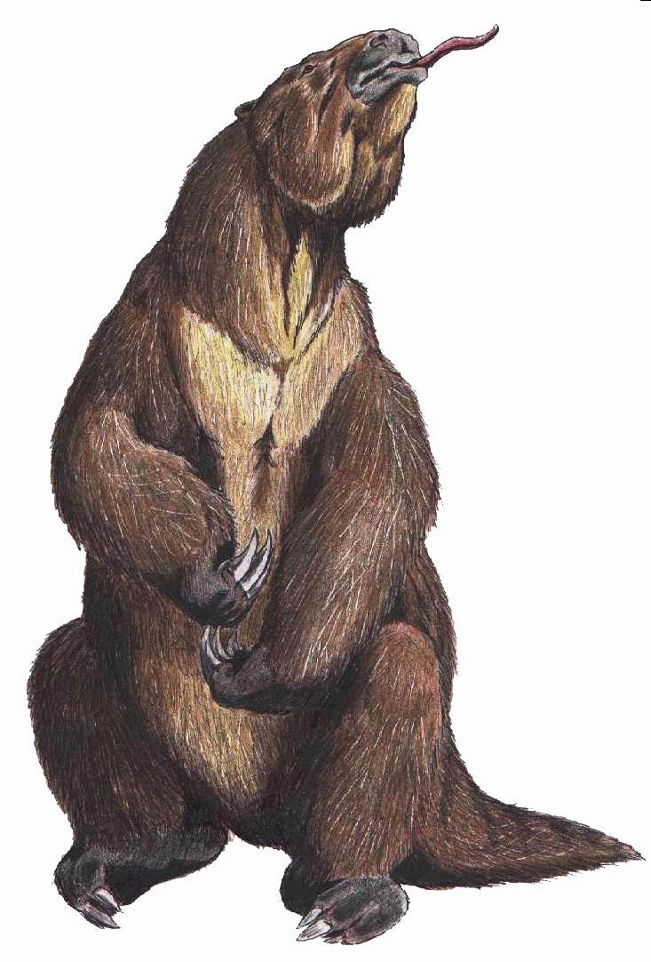 [Image: Megatherium_Americanum2.jpg]