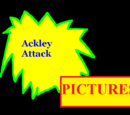 Ackley Attack Companies