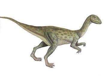 Pcab274 fulgurotherium