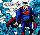 Action Comics Annual Vol 1 8/Images