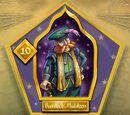 Chefs du Conseil des sorciers