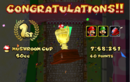 MKDD Screenshot Pilz-Cup.png