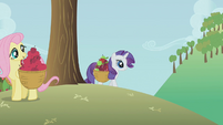 Rarity and Fluttershy gathering apples S1E4