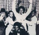 Grandwizard Theodore & the Fantastic Five (rap group)