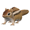 Minor Pet The Sims Wiki