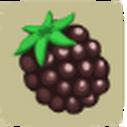 Q-Blackberry.png