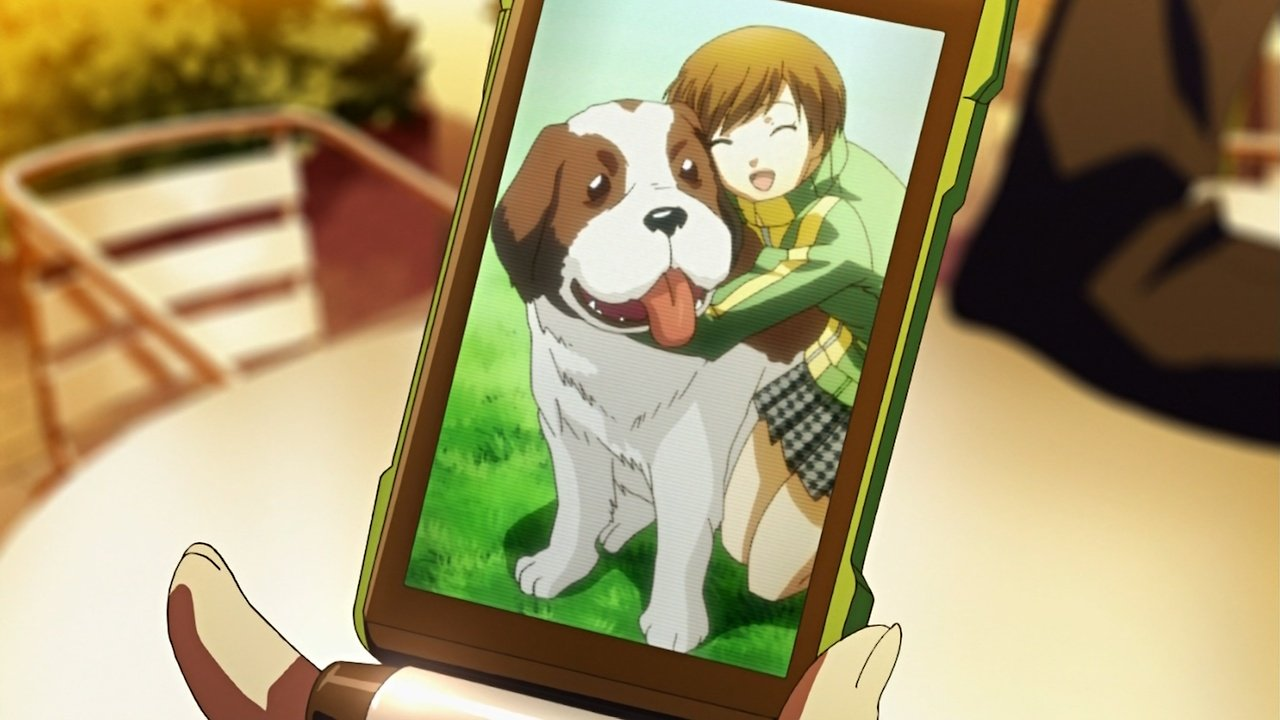 Most Inspiring Saint Bernards Anime Adorable Dog - Chie_has_a_picture_of_her_pet  Trends_86477  .jpg