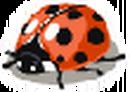 Icon Q Ladybug.png