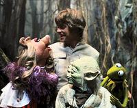 Yoda muppets