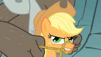 Applejack serious face S01E19