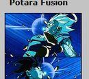 Potara Fusion Card